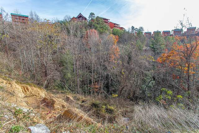 Lot 50 Smoky Ridge Way, Sevierville, TN 37862 (#1137045) :: Realty Executives Associates