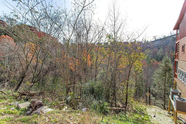 Lot 49 Smoky Ridge Way, Sevierville, TN 37862 (#1137046) :: Realty Executives Associates