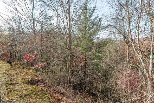 Lot #54 Smoky Ridge Way, Sevierville, TN 37862 (#1137047) :: Realty Executives Associates