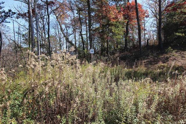 Lot 32 Mountain Ash Way, Sevierville, TN 37876 (#1137116) :: Catrina Foster Group