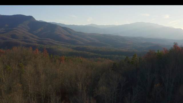 314 Acres Hickey Rd, Gatlinburg, TN 37738 (#1137300) :: Tennessee Elite Realty