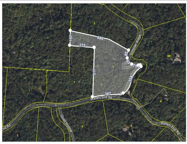 Lot 1 Waters End Rd, Walland, TN 37886 (#1137446) :: Billy Houston Group