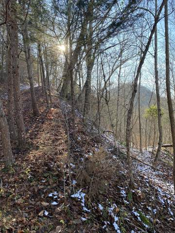 Lot 63 Mountain Shores Rd, New Tazewell, TN 37825 (#1137551) :: The Cook Team