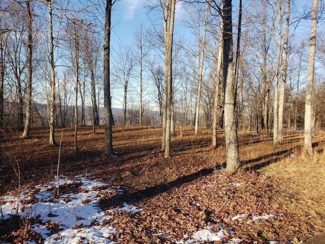 Lot 31 Woodland Tr, Sparta, TN 38583 (#1137666) :: Billy Houston Group