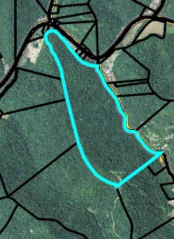 Trace Branch Rd Rd, Flat Lick, KY 40935 (#1137842) :: Tennessee Elite Realty
