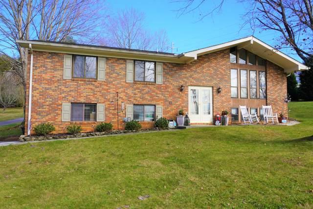 786 Lakewood Drive, Jefferson City, TN 37760 (#1137844) :: Realty Executives Associates Main Street