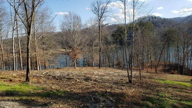 Rockfish Point, New Tazewell, TN 37825 (#1137921) :: Realty Executives Associates Main Street