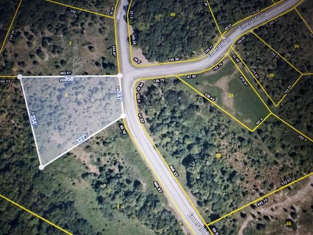 Emerald Pointe Circle, Rockwood, TN 37854 (#1137923) :: Billy Houston Group