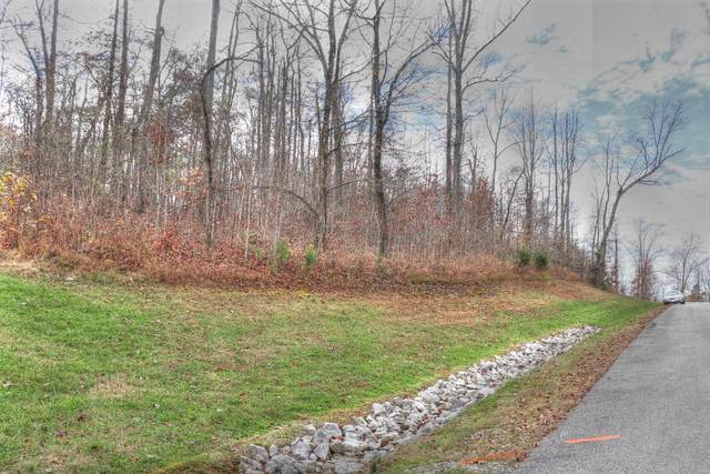 Lot 521 Walking Horse Tr, Rockwood, TN 37854 (#1137937) :: The Cook Team