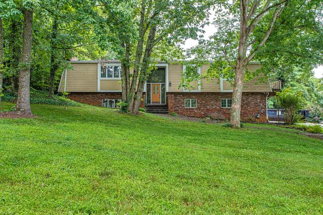 11028 Farragut Hills Blvd, Knoxville, TN 37934 (#1138090) :: The Cook Team