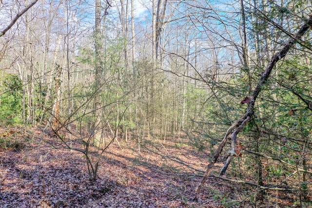 Avens Lane Lot 9 Lane, Tallassee, TN 37878 (#1138116) :: Cindy Kraus Group | Realty Executives Associates
