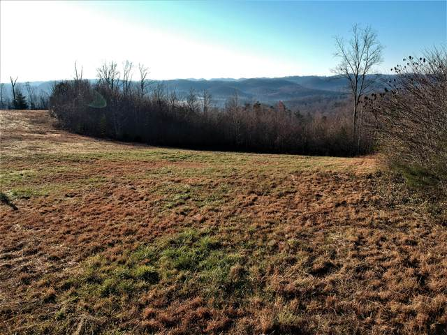 Panoramic Drive, Maynardville, TN 37807 (#1138183) :: Billy Houston Group
