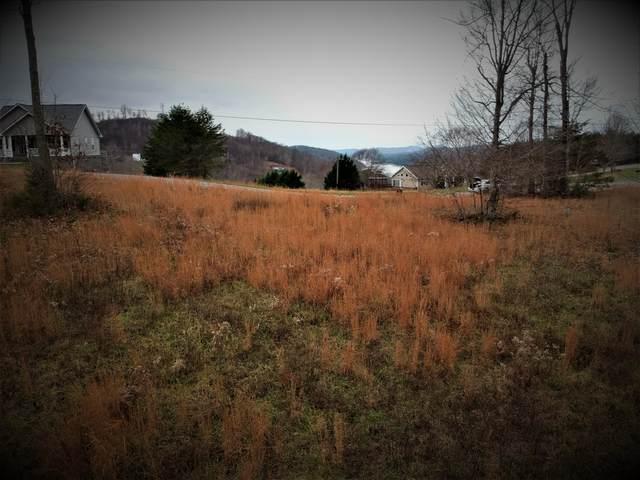 Panoramic Drive, Maynardville, TN 37807 (#1138184) :: Billy Houston Group