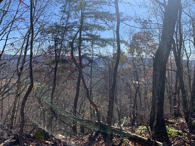 0 Raven Rock, Pikeville, TN 37367 (#1138242) :: The Cook Team