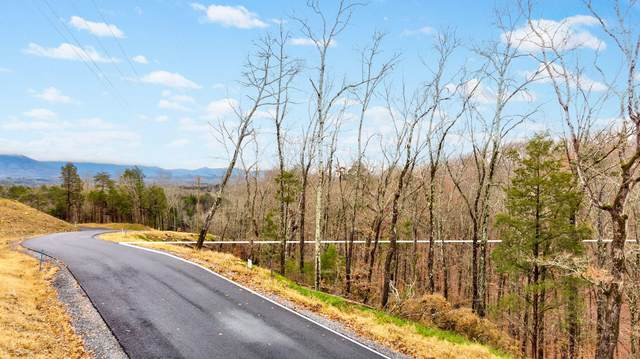 1298 Deerwood Drive, Dandridge, TN 37725 (#1138266) :: Shannon Foster Boline Group