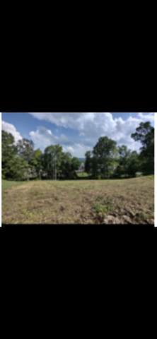 3356 Whispering Oaks Drive, Knoxville, TN 37938 (#1138306) :: Billy Houston Group