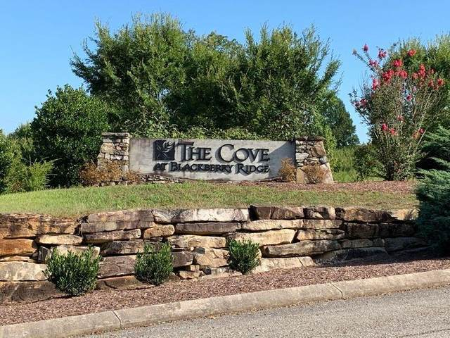 250 Lake Ferry Drive, Loudon, TN 37774 (#1138643) :: Billy Houston Group