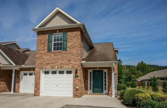 3701 Eliza Pointe Way, Knoxville, TN 37921 (#1138708) :: Billy Houston Group
