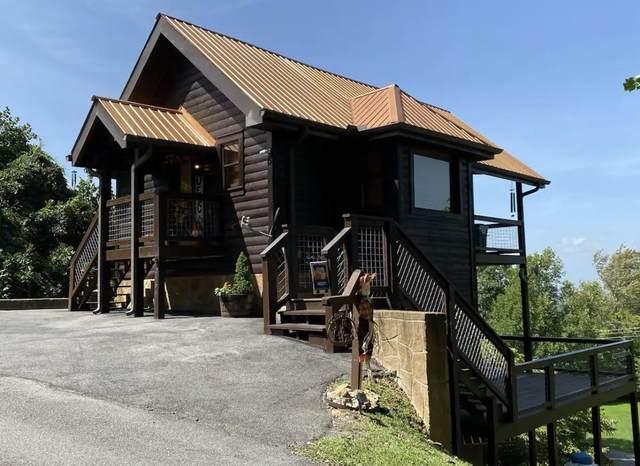 2464 Black Bear Ridge Way, Sevierville, TN 37862 (#1139102) :: Billy Houston Group