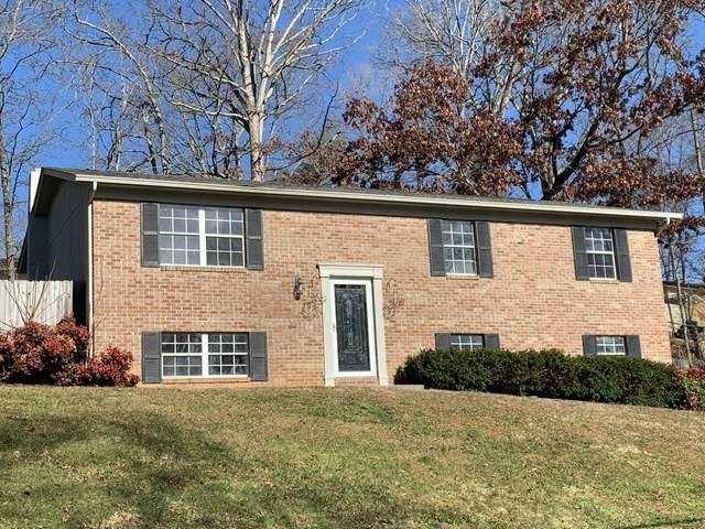 4105 Inisbrook Way, Knoxville, TN 37938 (#1139169) :: Billy Houston Group
