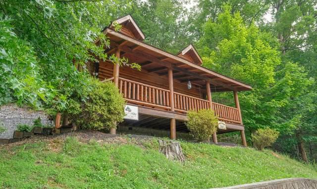 3225 Smoky Ridge Way, Sevierville, TN 37862 (#1139184) :: Billy Houston Group