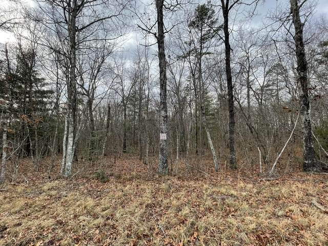 Lot 47 St Anthony Drive, Jamestown, TN 38556 (#1139342) :: Cindy Kraus Group | Realty Executives Associates