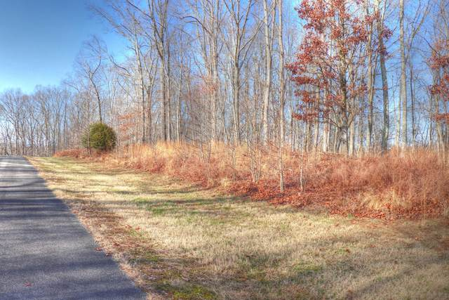 Lot 209 Reuben Ridge, Rockwood, TN 37854 (#1139347) :: Realty Executives Associates Main Street