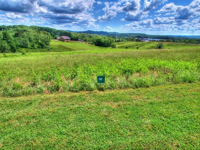 Lot 640 Majestic View Drive, Rockwood, TN 37854 (#1139352) :: Realty Executives Associates Main Street