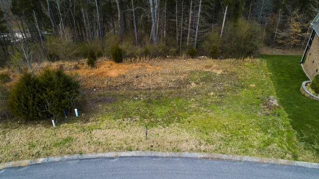 2348 Misty Mountain Circle, Knoxville, TN 37932 (#1139358) :: Billy Houston Group