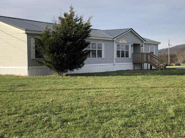 525 Farm Loop Rd, New Market, TN 37820 (#1139512) :: Billy Houston Group
