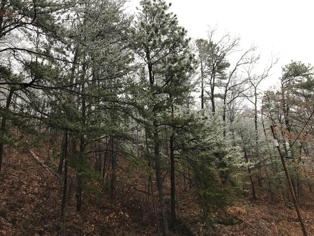 Overholt Trail, Sevierville, TN 37862 (#1139541) :: Billy Houston Group