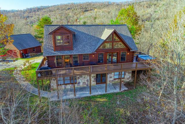 201 Wildcat Hollow Rd, New Tazewell, TN 37825 (#1139554) :: The Cook Team