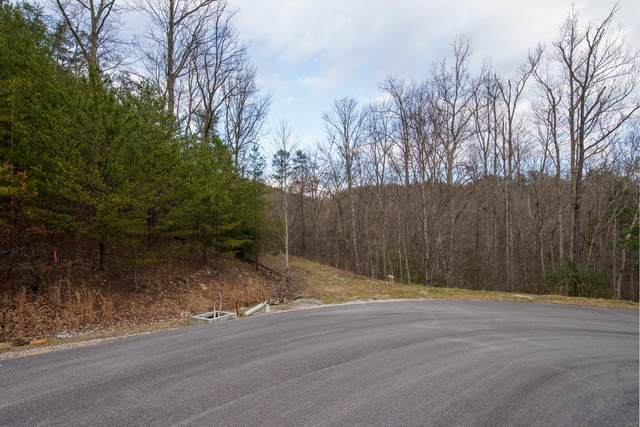 Jones Creek Lane, Sevierville, TN 37862 (#1139576) :: Billy Houston Group