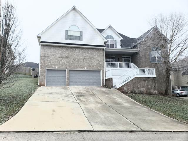 1208 Dreamview Lane, Knoxville, TN 37922 (#1139605) :: Cindy Kraus Group | Realty Executives Associates