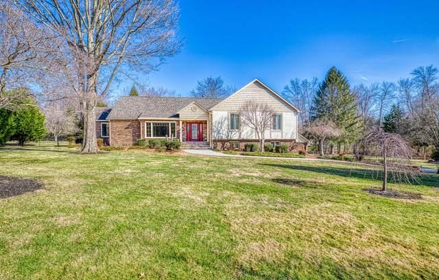 199 Rebecca Drive, Crossville, TN 38555 (#1139622) :: Realty Executives Associates Main Street