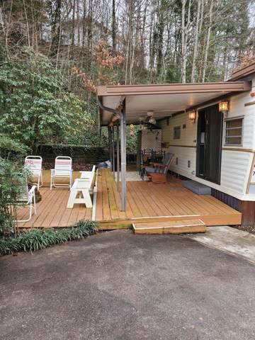 746 Big Valley Blvd, Townsend, TN 37882 (#1139673) :: Adam Wilson Realty