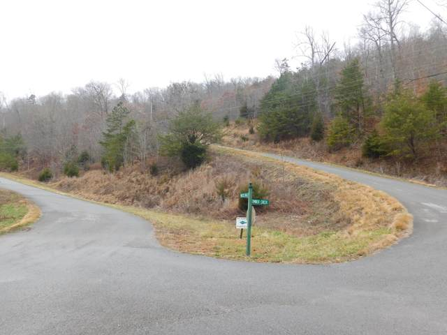 Lot 545 Timber Creek Rd Rd, New Tazewell, TN 37825 (#1139710) :: Billy Houston Group