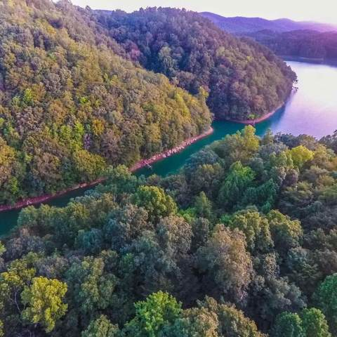 Lot 93 Norris Shores Lane, Sharps Chapel, TN 37866 (#1139876) :: Billy Houston Group
