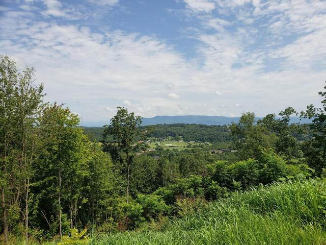Lot 16 Falcon Crest, Seymour, TN 37865 (#1139886) :: Adam Wilson Realty