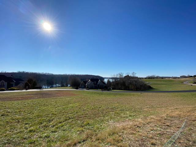 135 Cormorant Drive, Vonore, TN 37885 (#1139965) :: Billy Houston Group