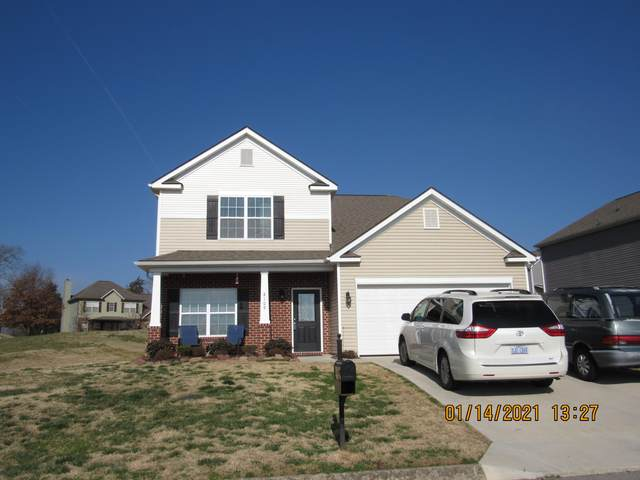8109 Thunder River Trail Tr, Corryton, TN 37721 (#1140017) :: Shannon Foster Boline Group