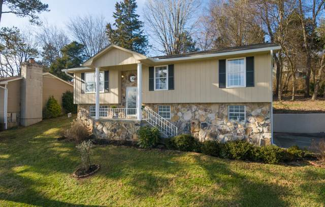 11333 Clear Point Drive, Knoxville, TN 37932 (#1140112) :: Cindy Kraus Group | Realty Executives Associates