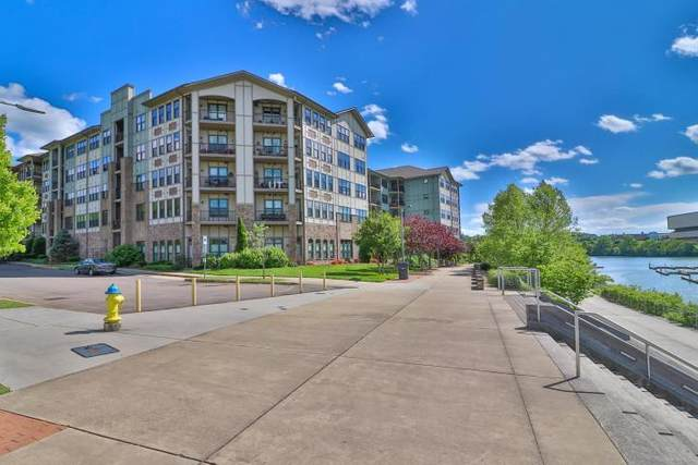 445 W Blount Ave #225, Knoxville, TN 37920 (#1140117) :: The Cook Team