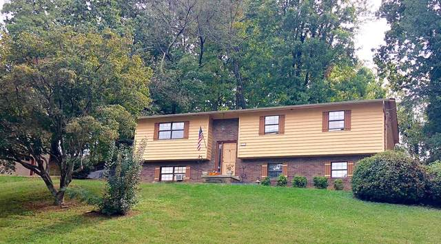 321 Oran Rd, Knoxville, TN 37934 (#1140132) :: Billy Houston Group