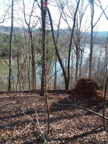 538 Scenic River Rd, Madisonville, TN 37354 (#1140199) :: Shannon Foster Boline Group
