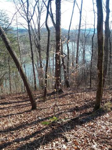 536 Scenic River Rd, Madisonville, TN 37354 (#1140204) :: Shannon Foster Boline Group