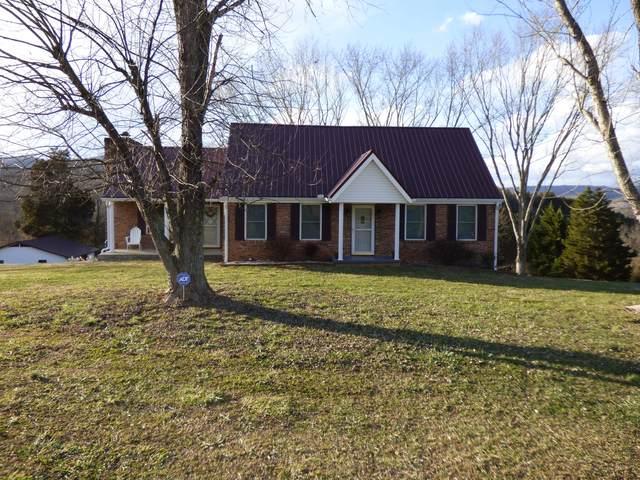 116 Proffitt Ridge Rd, Mooresburg, TN 37811 (#1140205) :: Billy Houston Group