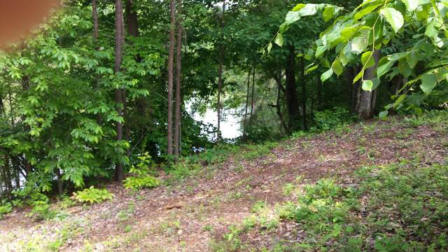 Lot 60 Blue Heron Bluff Drive, Harriman, TN 37748 (#1140268) :: The Cook Team