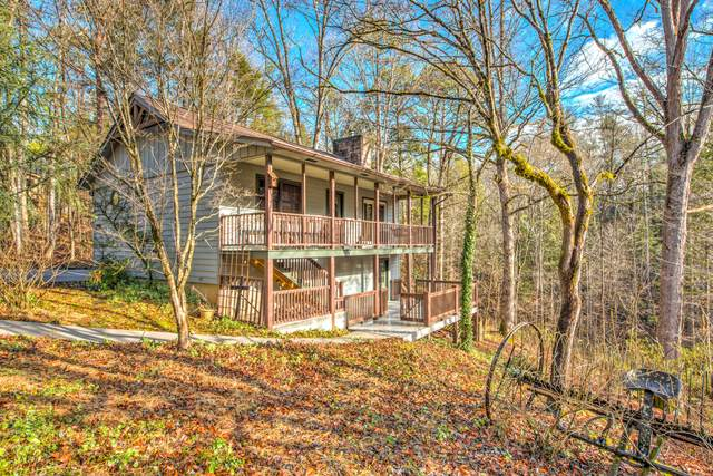 309 Laurel Rd, Townsend, TN 37882 (#1140304) :: Billy Houston Group