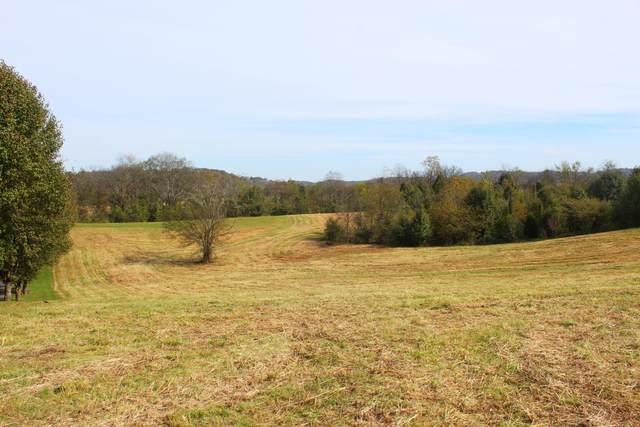Boyds Creek Hwy, Sevierville, TN 37876 (#1140413) :: The Terrell Team